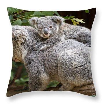 Koala Joey Piggy Back Throw Pillow