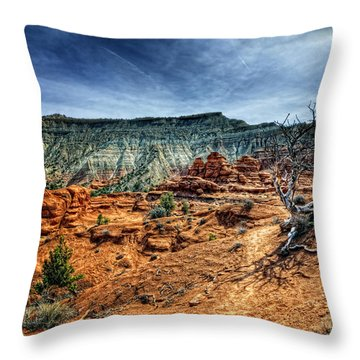 Kodachrome Basin Afternoon Throw Pillow