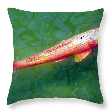 Throw Pillow featuring the photograph Koi Fish by Joseph Frank Baraba