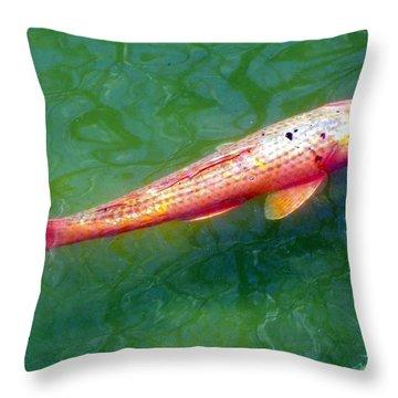 Koi Fish Throw Pillow by Joseph Frank Baraba