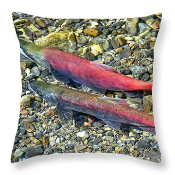 Throw Pillow featuring the photograph Kokanee Salmon At Taylor Creek by David Lawson