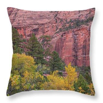 Kolob Canyon Colors Throw Pillow