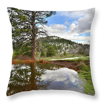 Throw Pillow featuring the photograph Kolob Reflection by Ray Mathis