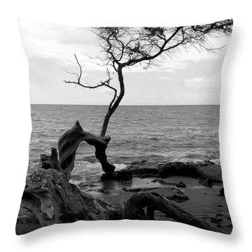 Kona Coast Tree Throw Pillow
