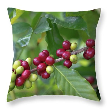 Kona Coffee Cherries Throw Pillow
