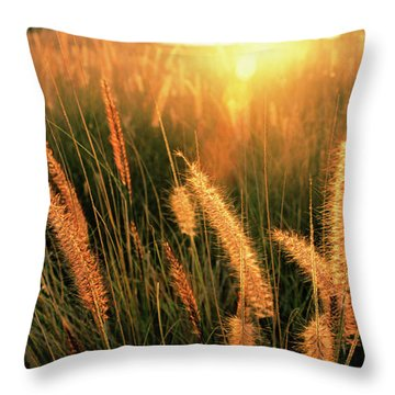 Kona Light On Fountain Grass I Throw Pillow