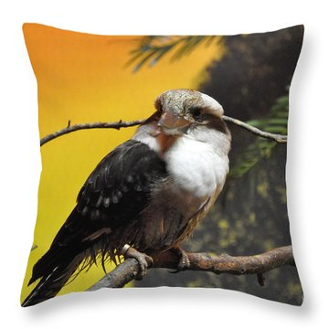 Throw Pillow featuring the photograph Kookaburra by John Black