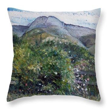 Kopberg Heidelberg Western Cape South Africa Throw Pillow by Enver Larney