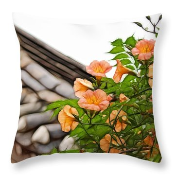 Korean Beauty Throw Pillow by Cameron Wood