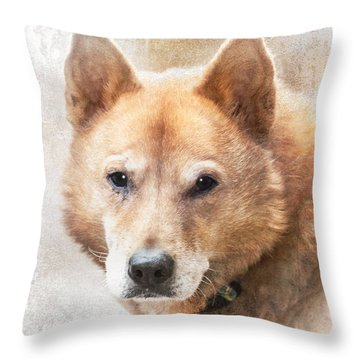 Korean Jindo Portrait Throw Pillow