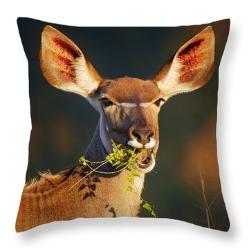 Kudu Portrait Eating Green Leaves Throw Pillow