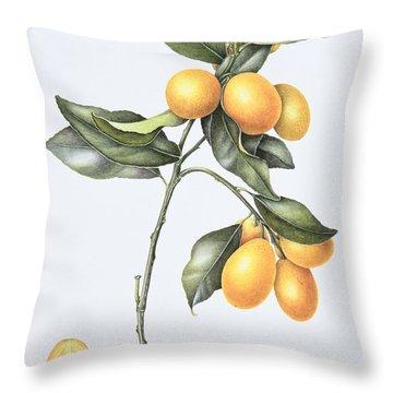 Kumquat Throw Pillow