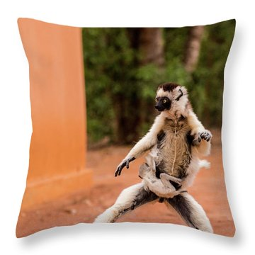 Kung Fu Mom Throw Pillow by Alex Lapidus