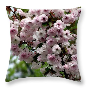 Japanese Cherry Tree Blossoms Highland Park Rochester Ny Watercolor Effect Throw Pillow