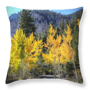 Kyle Canyon Aspen Throw Pillow