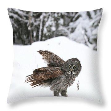L Epouvantail. Throw Pillow