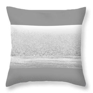 L22-120 Throw Pillow