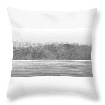 L22-3 Throw Pillow