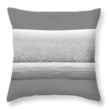 L22-83 Throw Pillow