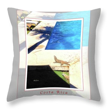 la Casita Playa Hermosa Puntarenas Costa Rica - Iguanas Poolside Greeting Card Poster Throw Pillow by Felipe Adan Lerma