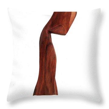 La Despedida 23 Throw Pillow by Jorge Berlato