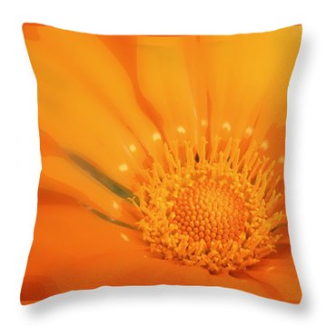 La Fleur D'orange Throw Pillow