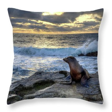 Throw Pillow featuring the photograph La Jolla Sea Lion by Eddie Yerkish
