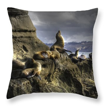 La Jolla Seals Throw Pillow