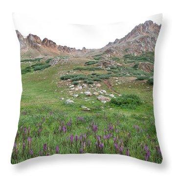 La Plata Peak Throw Pillow