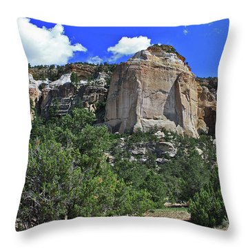 La Ventana Arch Throw Pillow by Gary Kaylor