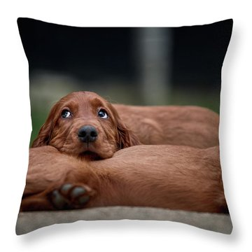 La Vita E Bella Throw Pillow