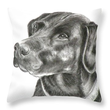 Lab Charcoal Drawing Throw Pillow