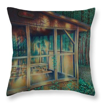 Labor Day Lights Throw Pillow
