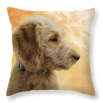 Labradoodle Puppy Throw Pillow