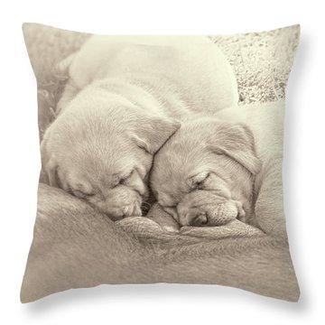 Throw Pillow featuring the photograph Labrador Retriever Puppies Nursing Sepia by Jennie Marie Schell