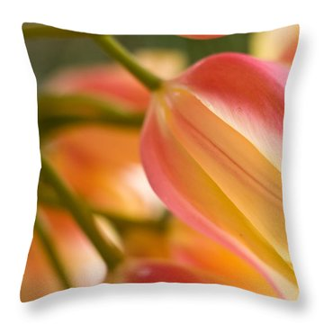 Labrynth Of Spring Throw Pillow by Mike Reid