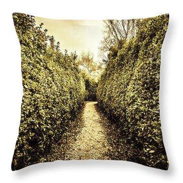 Labyrinth Lane Throw Pillow