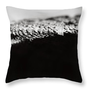 Labyrinth Throw Pillow by Rebecca Sherman