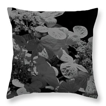 Lace Cap Hydrangea In Black And White Throw Pillow