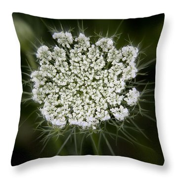 Throw Pillow featuring the photograph Lacy Queen by Michael Friedman