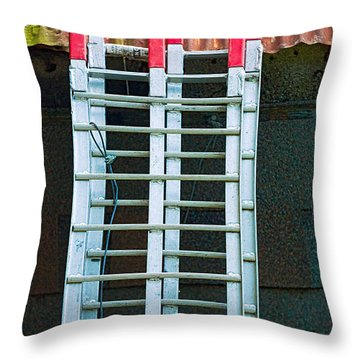 Ladder Shingles Roof Throw Pillow