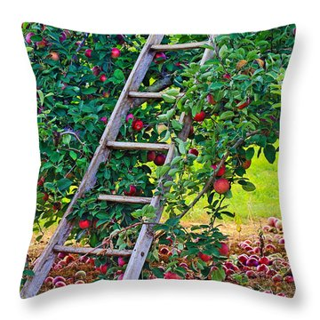 Ladder To The Top Throw Pillow