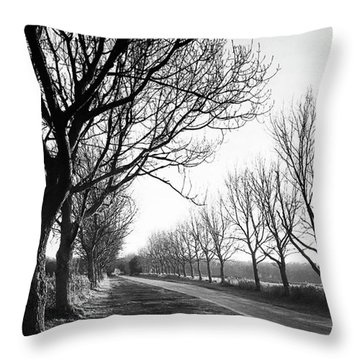Lady Anne's Drive, Holkham Throw Pillow by John Edwards