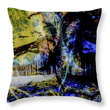 Lady At The Beach Through The Frozen Falls Throw Pillow