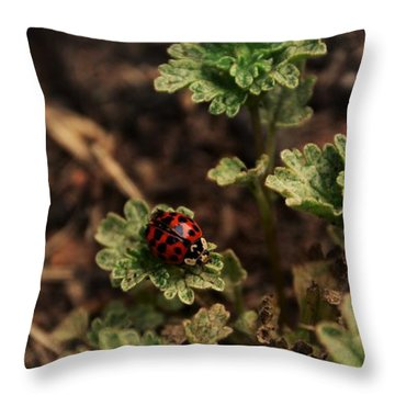 Lady Luck - Georgia Throw Pillow