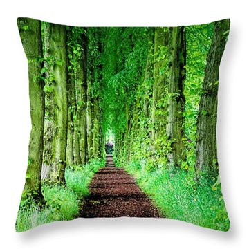Lady Lucy's Walk Throw Pillow by Wallaroo Images