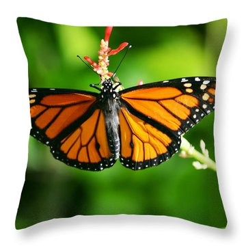 Lady Monarch Throw Pillow