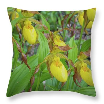 Throw Pillow featuring the photograph Lady Slippers by Paul Schultz