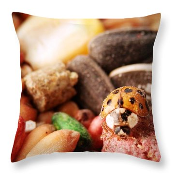 Lucky Ladybug At The Park Throw Pillow by Belinda Lee