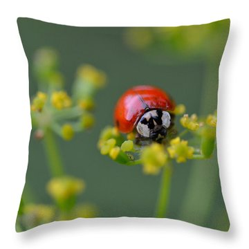 Ladybug In Red Throw Pillow